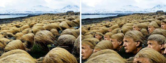 Secret Bilder viser, hvor Donald Trump raser håret