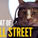 Chats dans célèbres scènes de films