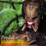 The Predator Bachelor