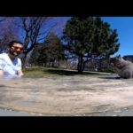 Squirrel steals GoPro camera