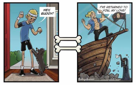 Wie Hunde die Welt sehen
