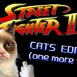 Street Fighter: Cats Edition – een keer)