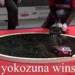 La competencia del robot de Sumo