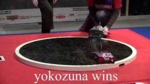 Sumo Robot Konkurranse
