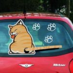 Cat Car Rear Wiper