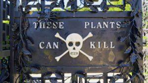 Il giardino più letale al mondo