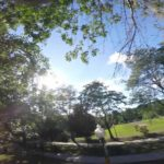 Squirrel steals a GoPro and filming the escape
