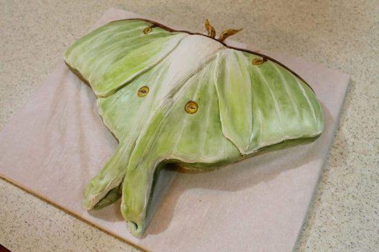 Katherine Dey backt Kuchen zum Gruseln