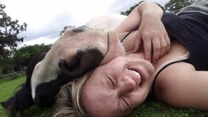 Sleepy horse uses a woman's head as a pillow