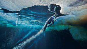Wie Kaiserpinguine mit Hochgeschwindigkeit das Wasser verlassen