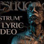 DBD: nostro – Meshuggah