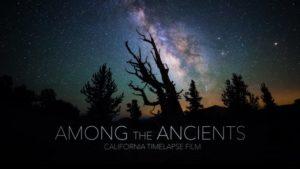 Wśród Starożytnych - California timelapse 4K
