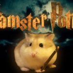 hamster Potter – Harry Potter justeras med Hamsters