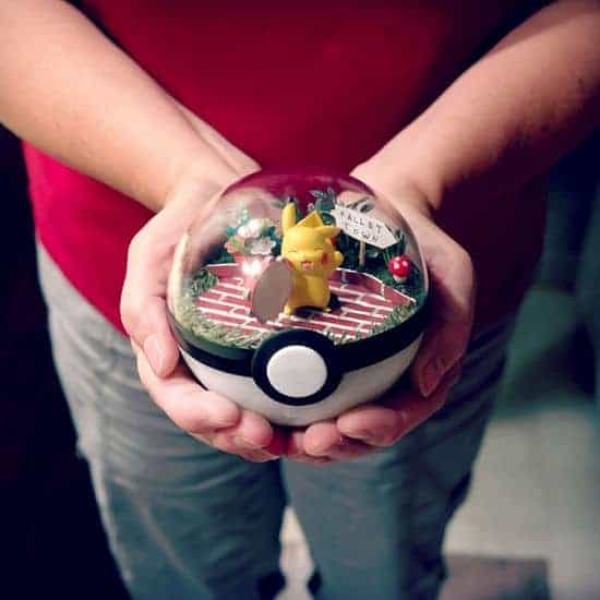 terrariums Pokeball