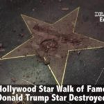 You have Donald Trump's Walk of Fame Star carved broken