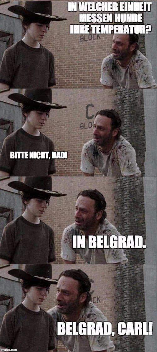 The Walking Dead: Lorsque Rick Grimes rausholt le jeu de mots