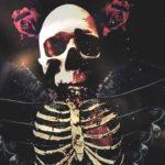 DBD: Kjærlighet Falls – Hellyeah