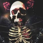 DHF: liefde Falls – Hellyeah