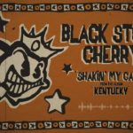 DBD: shakin' min bur – Black Stone Cherry