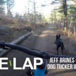 Quem é mais rápido? Tucker o cão ou Jeff Brines de ciclistas de montanha?