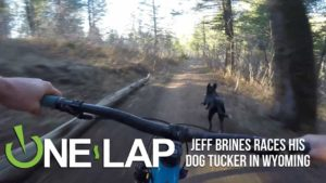 Who is faster? Tucker the dog or Jeff Brines of mountain bikers?
