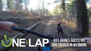 Wie is sneller? Tucker de hond of Jeff Pekel van mountainbikers?