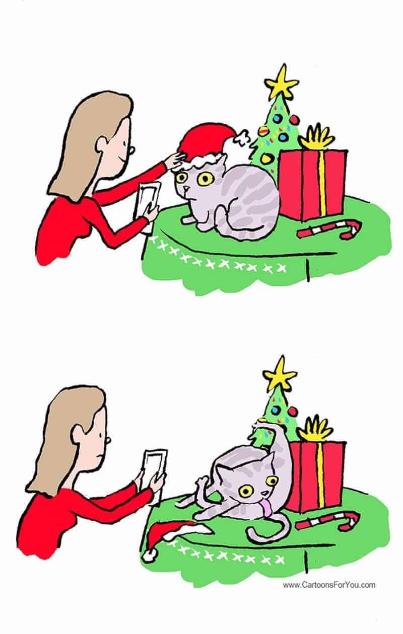 Weihnachtskarten Was Schreiben.Es Wird Langsam Zeit Die Weihnachtskarten Zu Schreiben Dravens