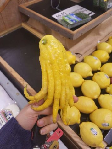When life gives you lemons make Cthulhu