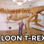 Life-size T-Rex from 1400 Balloons