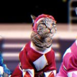 Mighty Morphin Meower Rangers: Power Rangers mit Katzen