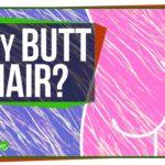 Perché a crescere i capelli sul culo?