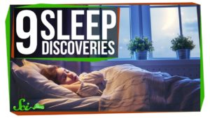 Neun bahnbrechende Entdeckungen zum Thema Schlaf