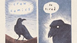 The Crow is Tired