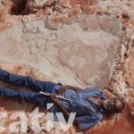 discovered the largest dinosaur footprint in the world