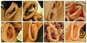 Quiz of the day: Flesh Tunnel or onion ring?