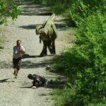 PRANK JURÁSICA: broma de mal con el Dino súper realista