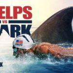 svømning konkurrence: Michael Phelps mod en stor hvid haj