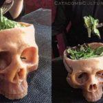 Ludzka czaszka Bowl – czaszka miska