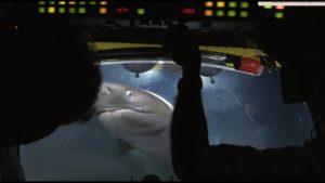 Blue Planet II Kulissien takana:  Jos hait sukellusvene 750 hyökkäys metrin syvyydessä