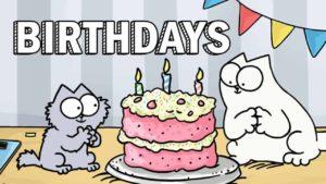 Simon's Cat's Guide to Birthdays