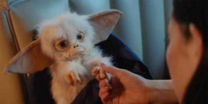 Gremlins: Recall – Fanfilm bringt die Weihnachtsgruselkuscheltiere zurück
