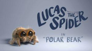 Lucas, a aranha bonito encontra um urso polar
