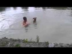 Dieser Hund rettet sein Herrchen vor dem Ertrinken