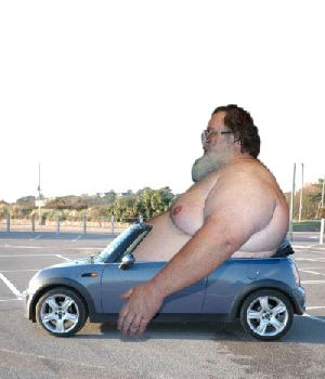 225629_fat_guy_in_car.jpg